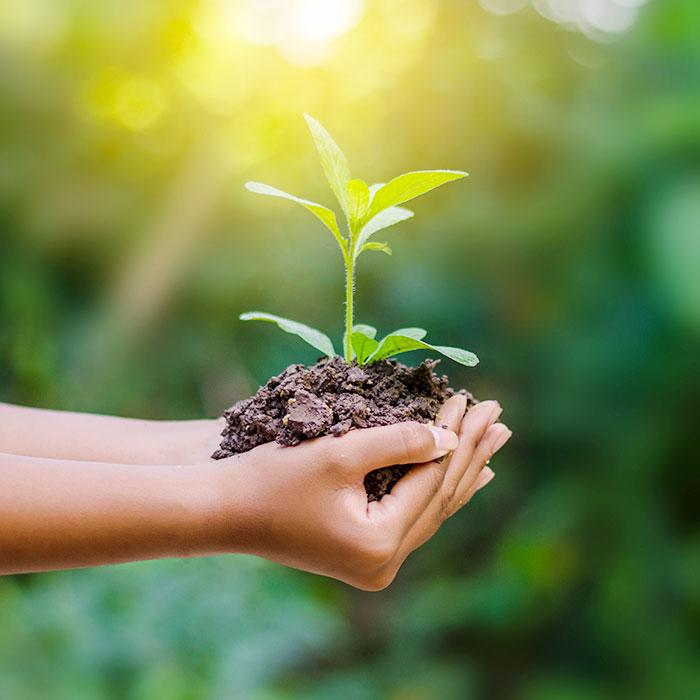 il nostro impegno eco-responsabile